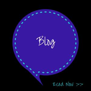 website button blog